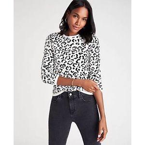 Ann Taylor Leopard Animal Jacquard Print Sweater S